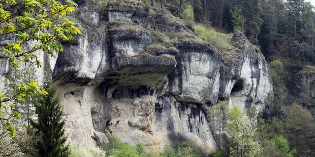 Riffkalke im Nördlichen Frankenjura – die Bärenschlucht. Foto: DAV/Steffen Reich