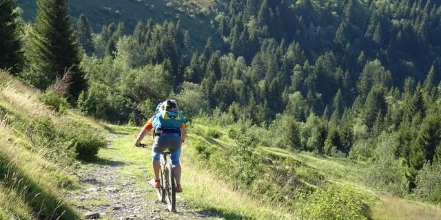 Tag 3: Tolle Trails bergab standen im Fokus der Reiseplanung.