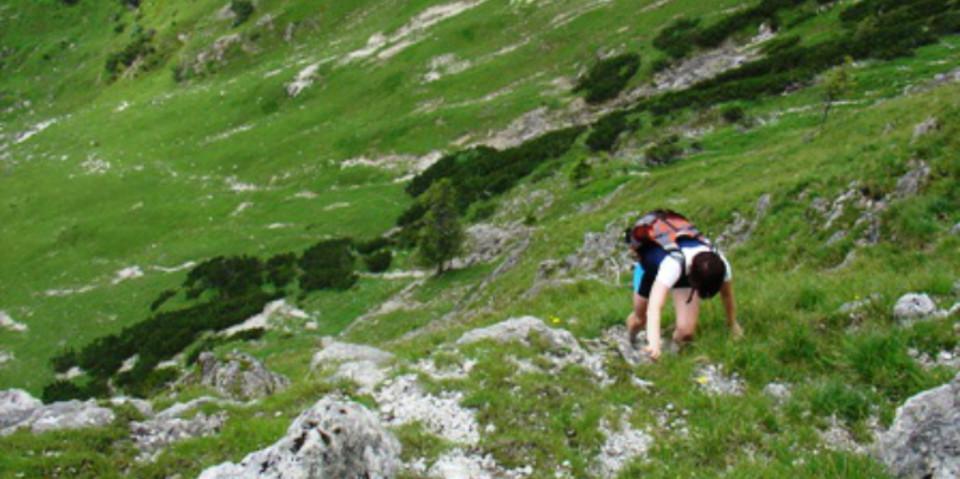 Aufstieg in steilem Gras am Sonnwendjoch, Karwendel, Bayern