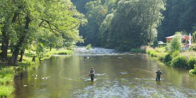 Auch andere Natursportler finden in den Harzer Bächen ihre Plätzchen. Foto: Folkert Lenz