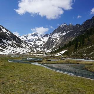 Gewässer, Moore und alpine Heiden in Gefahr. Foto: Anna Schöpfer