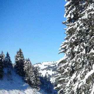 skitour riedberger horn