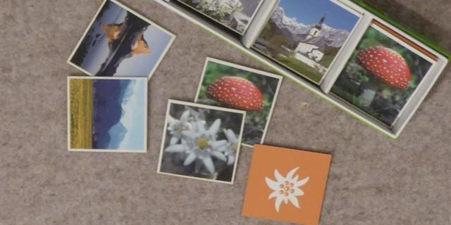 Alpen Memory