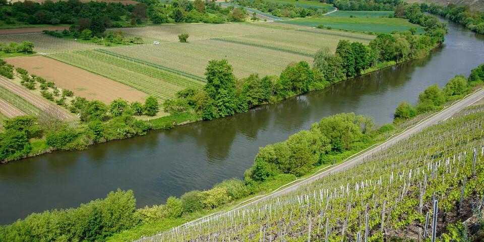 Klein, fein und idyllisch. Der Neckar mäandriert sich gemächlich gen Rhein. Foto: Joachim Chwasczca