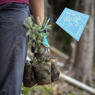 Mit den eigenen Händen anpacken, Foto: JDAV/Silvan Metz