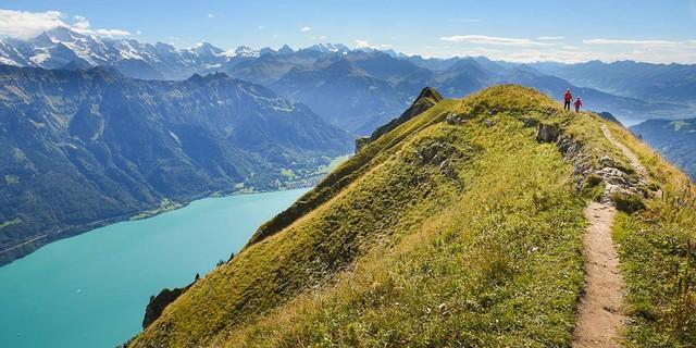 Der Brienzergrat ist eine der längsten Steilpromenaden der Berner Voralpen – auch die Aussicht ist kaum zu übertreffen. Foto: Bernd Jung